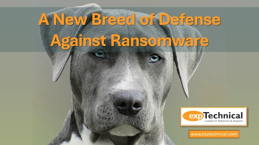 Endpoint Detection and Response is a New Breed of Defense